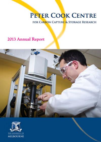 annual-report-2013